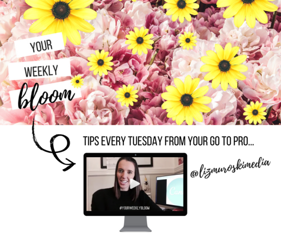 Your Weekly Bloom with Liz Muroski